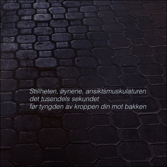 IMG_9519